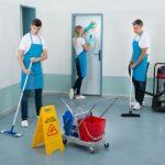 halı temizleme hizmeti antalya
